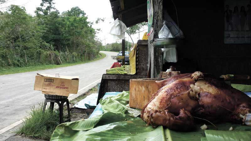 LECHON DRIVE. A 30-minute drive along the Transcentral Highway leads you to boiled sweet corn, fresh produce and a lechon surprise.
