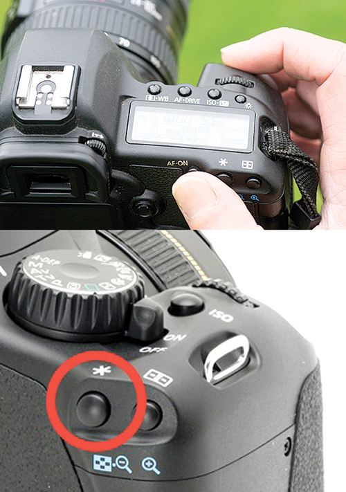 You can change the button assignment under menu in your camera.