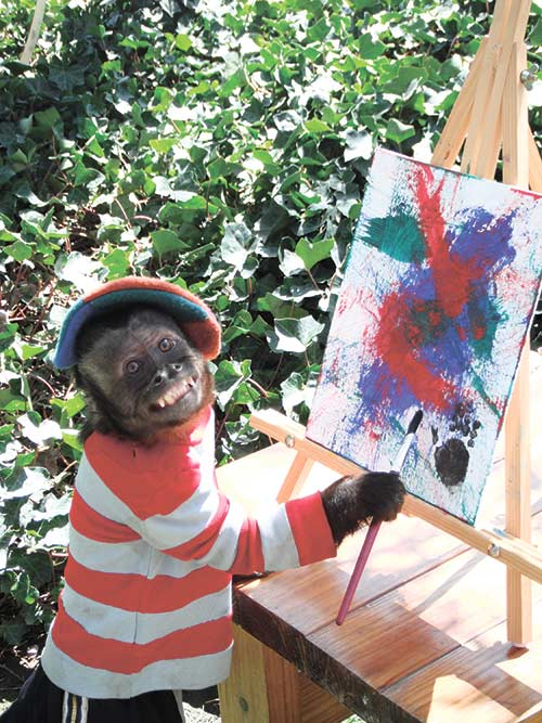 MOVIE VET(ERAN). Crystal, a 1-foot-7-inch female Capuchin monkey enjoys painting in her home in Los Angeles. Crystal, an animal actor that has starred in more than 25 movies over nearly two decades, has received a lifetime diva achievement award as part of the 6th annual American Humane Association Pawscars, the animal version of the Oscars. (AP FOTO)