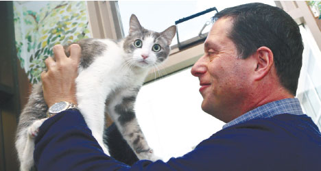 """FELINE FRIEND. Dr. Gary Weitzman, president and CEO of the San Diego Humane Society and SPCA and author of the new National Geographic book """"How to Speak Cat, has a word with Wesley, a resident of Humane Society shelterin San Diego. (AP FOTO)"""