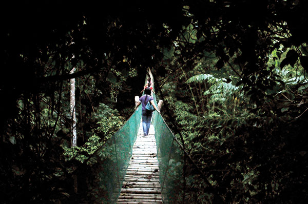 WOULD YOU DARE? This hanging bridge surrounded by thick foliage is among the several no-frill amenities at the quiet, relaxing and secluded Coal Mountain Resort.