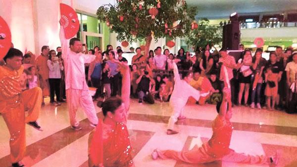 Wushu Kung Fu Fan Dance