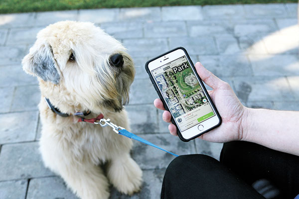 """WHISTLE. As shown by this Whistle pet tracker follows pet dogs, technology isn't just for humans, it's also for their furry friends. In Silicon Valley and beyond, a growing number of """"pet-tech"""" startups are selling devices to keep pets safe, healthy, entertained and connected when their owners are away. (AP PHOTO)"""