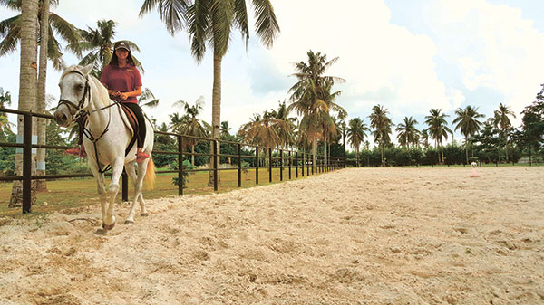 Horse riding in a 7,200-square-meter field